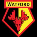 Watford_large